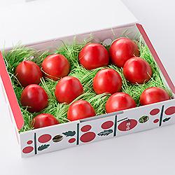 太陽の赤(糖度8)太陽のエネルギーとトマトの生命力が凝縮!