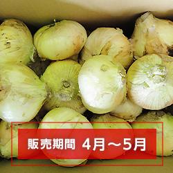 新玉ネギ【切玉】(徳用)大サイズ(9cm以上) 10kg