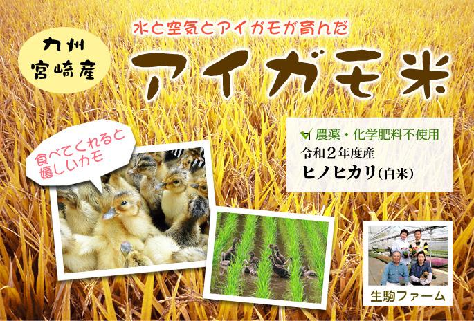 水と空気とアイガモが育てた アイガモ米