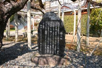 本東寺 慧日梅 石碑