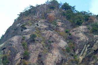 真下から見あげた比叡山