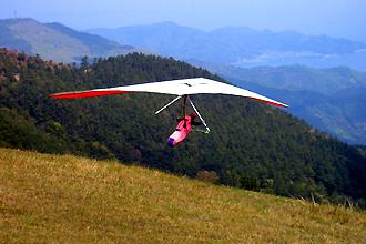 鏡山から飛び立つ鳥眼下にはリアス式の美しい海岸線