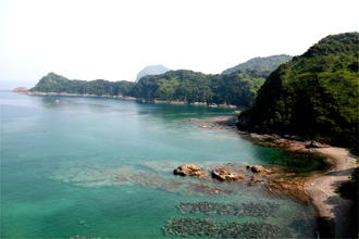 七つ島展望所から「ビーチの森すみえ」へ少し下った所からの景色