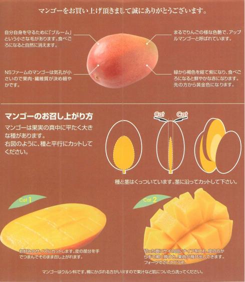マンゴーのお召し上がり方
