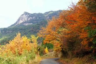 大崩山近辺の紅葉