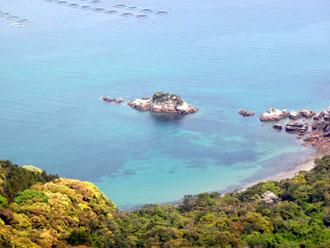 島浦のサンゴ礁