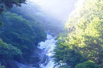 自然いっぱいの鹿川渓谷