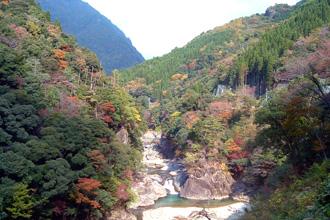 鹿川渓谷 秋