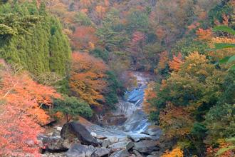 秋づく鹿川渓谷