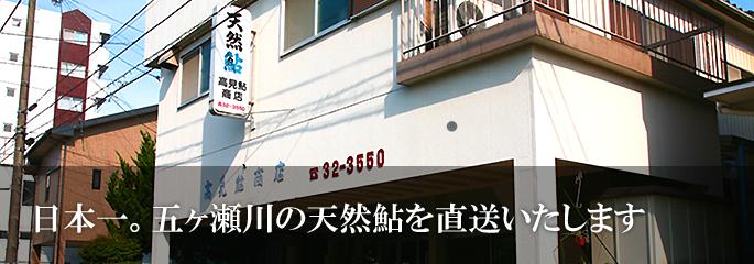 日本一。五ヶ瀬川の天然鮎を直送いたします