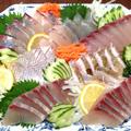 島浦の魚 金寿カンパチ、マダイ、シマアジ 有限会社結城水産