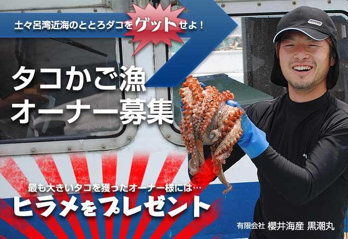 タコかご漁オーナー募集 最も大きいタコを獲ったオーナー様には、ヒラメをプレゼント