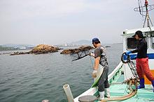 間隔をとりながら、10個のかごを海に投げ入れていきます